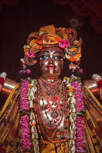 Sri Caitanya Mahaprabhu, Mayapur
