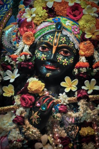 Decorated Krishna Deity at ISKCON Vrindavana, India